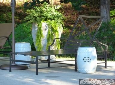 بهترین گیاهان برای حیاط های کم آفتاب